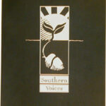 Southern Voices - Book Cover