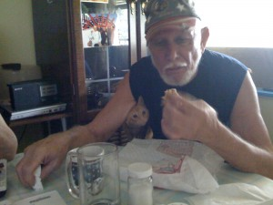 Pop & Mojo Eating